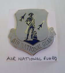 1 Air National Guard Minuteman and Rockets Insignia Pin