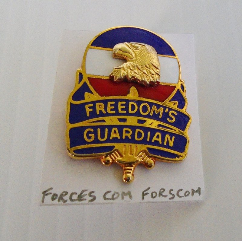 U.S. Army Forces Command FORSCOM Insignia Pin. Headquartered at Fort Bragg North Carolina. Created on July 1, 1973. Worn on uniforms.