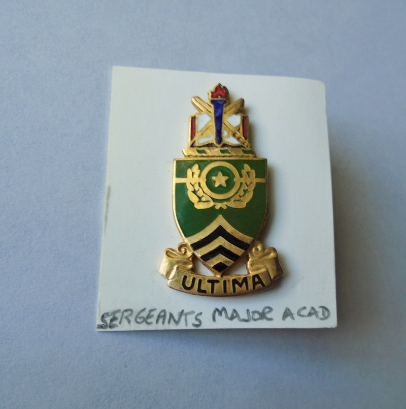 Insignia DUI pin for U.S. Army Sergeants Major Academy at Fort Bliss Texas. Marked D22. Worn on uniforms.