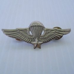 Military Jump Wings Parachute Pin, 5 point star, Vietnam Era