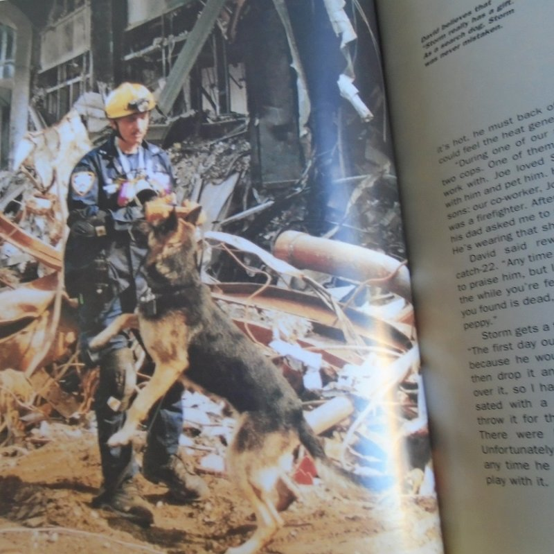 Dog Heroes of September 11th, A Tribute to America's Search and Rescue Dogs. About dogs whose job was to search the Twin Towers ruble for victims.