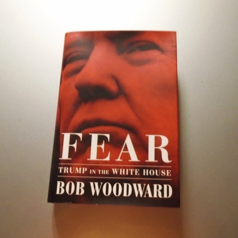 Bob Woodward, Fear - Trump in the White House.