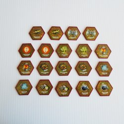 Heroscape Glyphs Disks, 19 pieces