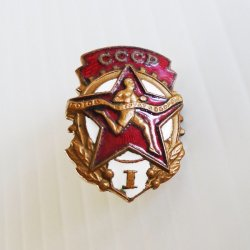 CCCP USSR Labor and Defense 1950s Pin Badge