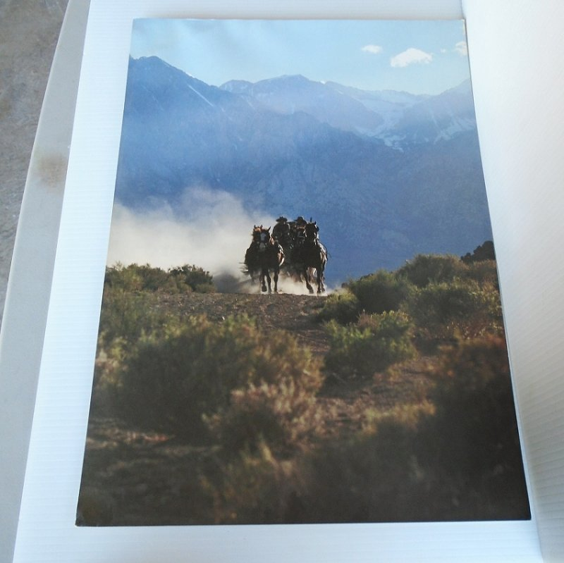 Wells Fargo Bank poster featuring horses and stagecoach racing through desert sagebrush. 14 by 20 inch. Ready to frame.
