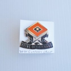 30th U.S. Army Support Group DUI Insignia Pin