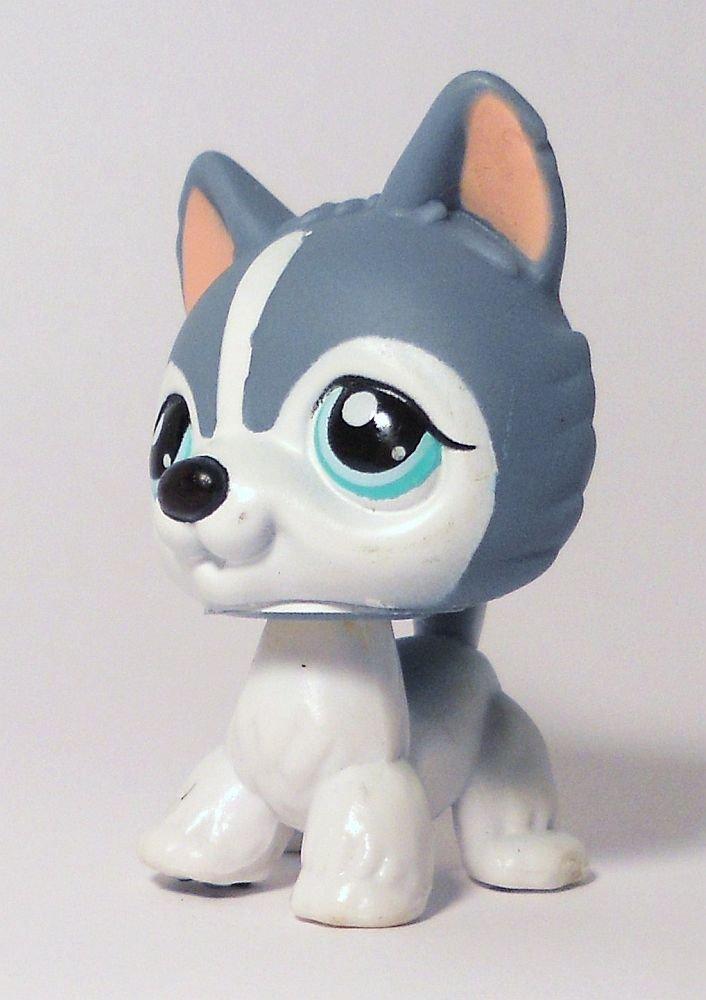 littlest pet shop gray  u0026 white husky no   loose puzzle sp ed