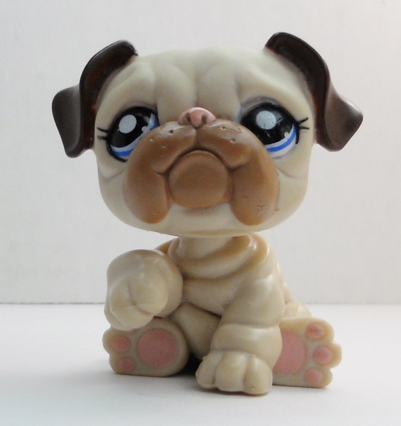 littlest pet shop bulldog littlest pet shop english bulldog 1765 brown creamy tan 2867