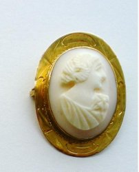 '.Pink Shell Cameo Brooch.'