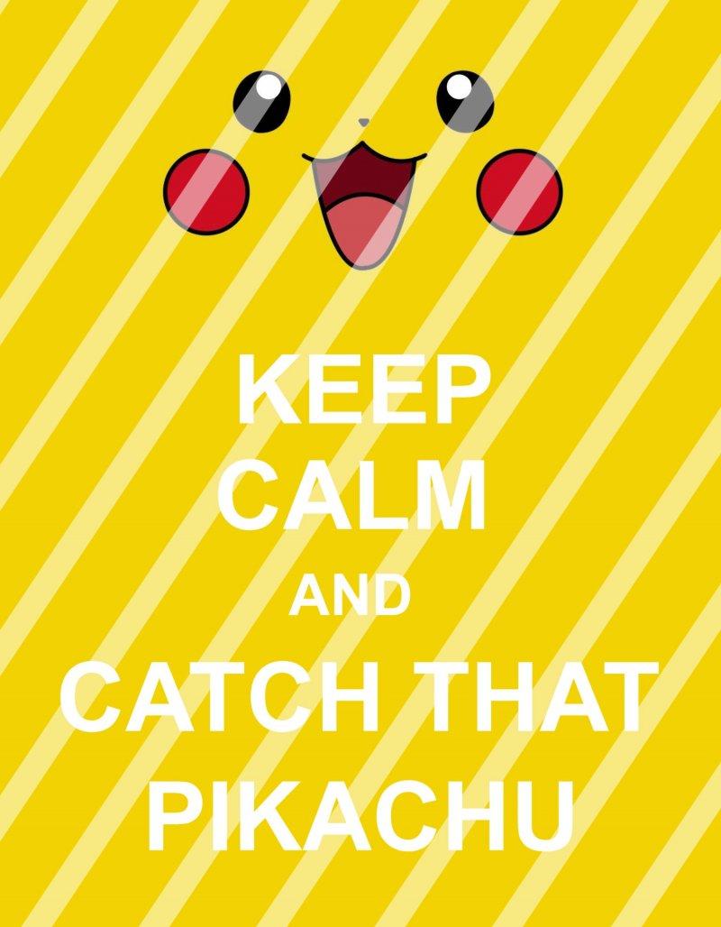 Pokemon Go Keep Calm Wall Decor Sign #1 (digital or shipped)