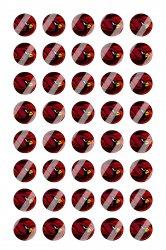 Arizona Cardinals Mini Bottle Cap 1/2 Circle Images Sheet #A10 instant download