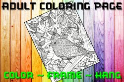 Bird Adult Coloring Page Sheet #3 (digital or shipped)