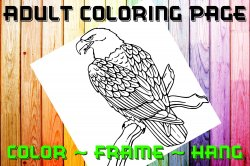Eagle Adult Coloring Page Sheet #1 (digital or shipped)
