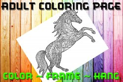 Horse Adult Coloring Page Sheet #1 (digital or shipped)