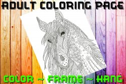 Horse Adult Coloring Page Sheet #5 (digital or shipped)