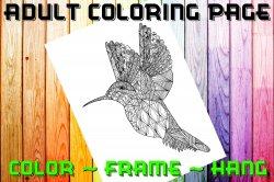 Hummingbird Adult Coloring Page Sheet #1 (digital or shipped)