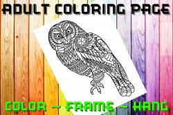 Owl Adult Coloring Page Sheet #1 (digital or shipped)