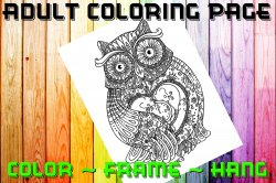 Owl Adult Coloring Page Sheet #4 (digital or shipped)