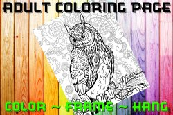 Owl Adult Coloring Page Sheet #13 (digital or shipped)