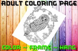 Owl Adult Coloring Page Sheet #14 (digital or shipped)