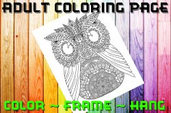 Owl Adult Coloring Page Sheet #16 (digital or shipped)