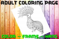 Peacock Adult Coloring Page Sheet #5 (digital or shipped)