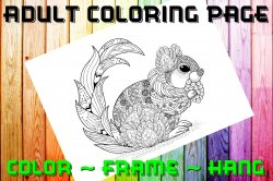 Squirrel Adult Coloring Page Sheet #3 (digital or shipped)