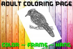 Bird Adult Coloring Page Sheet #5 (digital or shipped)