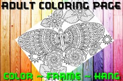 Butterfly Adult Coloring Page Sheet #35 (digital or shipped)