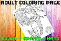 Elephant Adult Coloring Page Sheet #12 (digital or shipped)