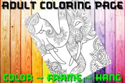 Elephant Adult Coloring Page Sheet #13 (digital or shipped)