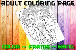 Elephant Adult Coloring Page Sheet #16 (digital or shipped)