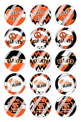 '.San Francisco Giants Sheet #2x.'