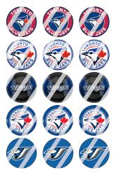 '.Toronto Blue Jays Sheet #1.'