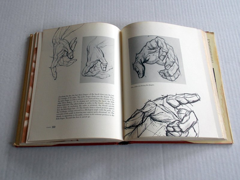 1968 Dynamic Anatomy Burne Hogarth Hardcover