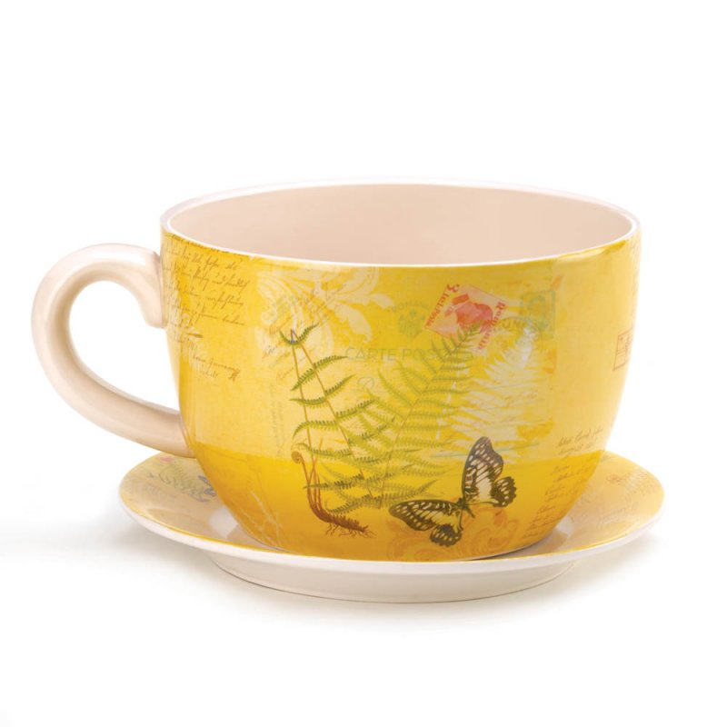 Image 1 of Hugh Yellow Butterfly Theme Teacup & Saucer Planter Drain Hole Bottom of Teacup