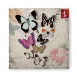Butterfly Postcard 3D Iron Wall Art Floral Background