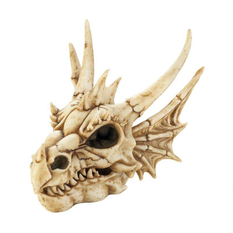 Image 0 of Ferocious Dragon Head Skull Trinket Keepsake Box