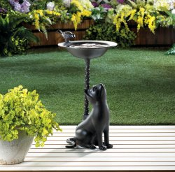 Brown Aluminum Birdbath with Cat looking up at Perched Bird