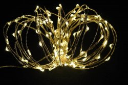 30 LED Copper String/Fairy Lights Warm White Light