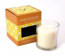 Mango & Tangerine Scented Jar Candle 5.5 Oz 30 Hours Burn Time Lead Free Wick