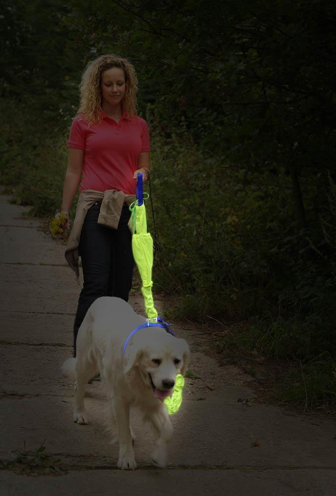 Image 1 of 3-Piece Reflective 6 Foot Dog Leash, 5 Foot Training Harness and Collar