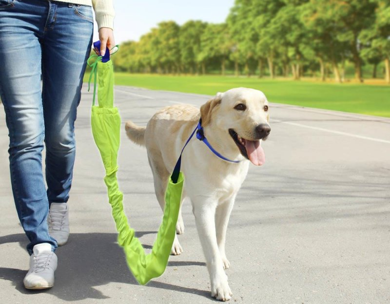 Image 2 of 3-Piece Reflective 6 Foot Dog Leash, 5 Foot Training Harness and Collar
