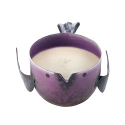 Pomegrante Scented Soy Wax Candle in Iron Purple Birdie Holder