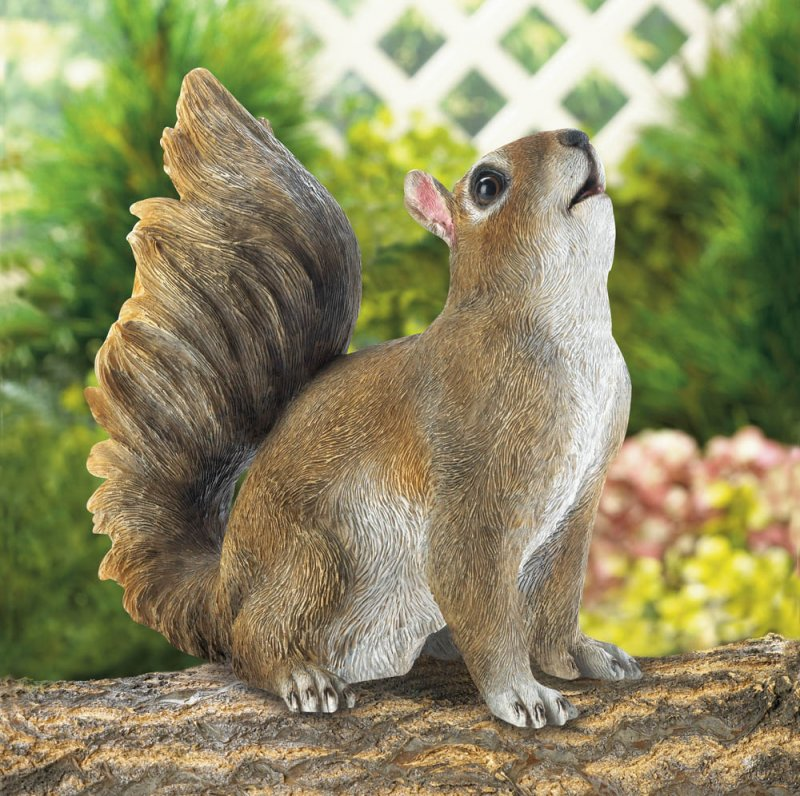 This bushy-tailed squirrel has his nose up, catching the scents or your yard.