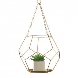 Hanging Geometric Plant Holder Gold Base Pentagon Shape for Small Plants