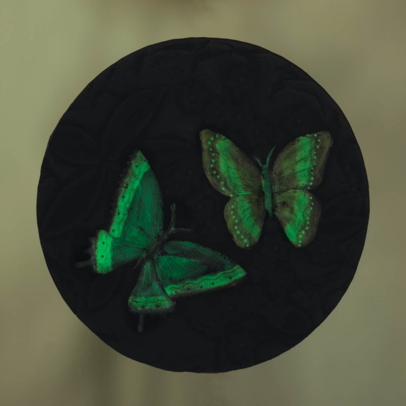 Image 2 of Glow in the Dark Butterfly Garden Stepping Stone with Pink Flowers
