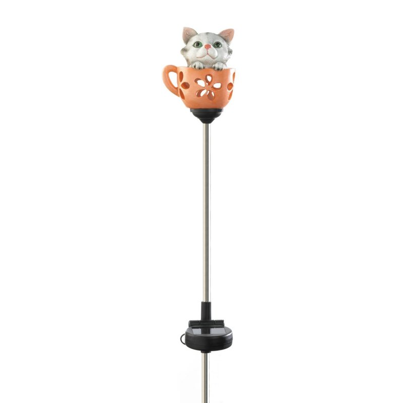 Little kitty in a cup weighs 0.4 lbs. 