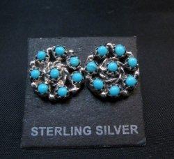 Randy Hooee Zuni Turquoise Snake Eye Cluster Post Earrings