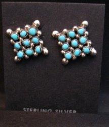 Calvert Lamy Zuni Turquoise Snake Eye Stud Earrings